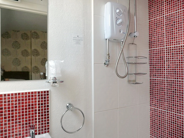 En-suite with shower, basin, WC and downflow heater.